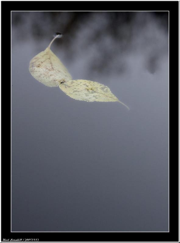 20051113 - Floating -