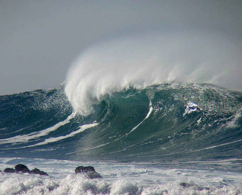 1 ex curl spray wave.jpg