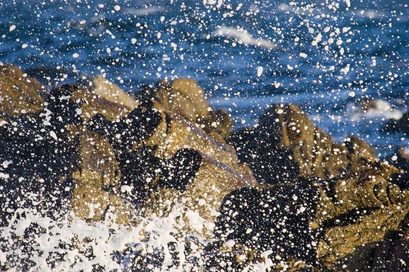 ex all foam wave close up_MG_9426.jpg