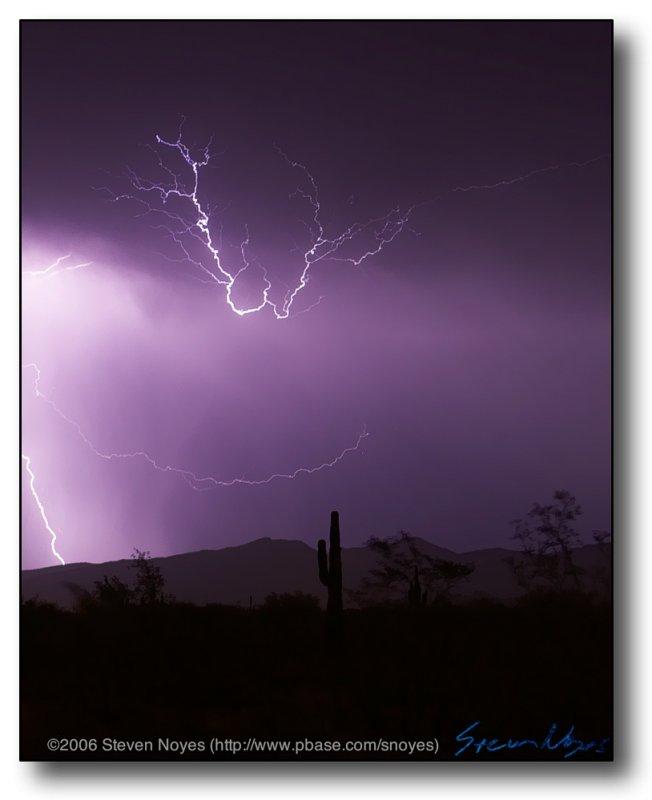 AZ Monsoon Lightning : Cactus Loop