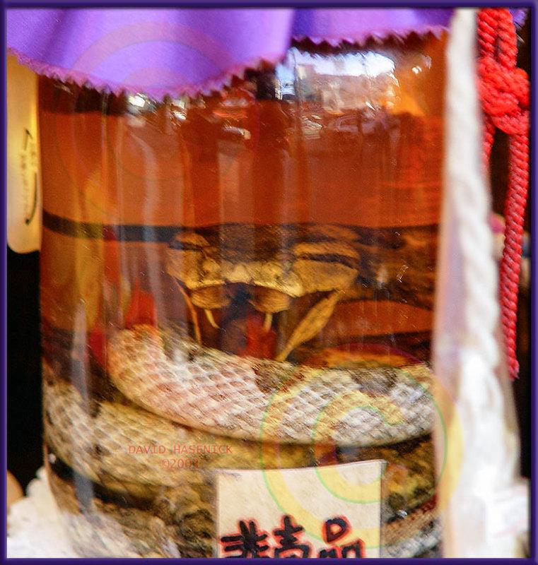 Habu Snake in Awamori Sake