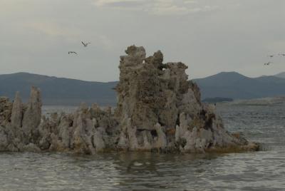 Tufa formations on Mono Lake 1
