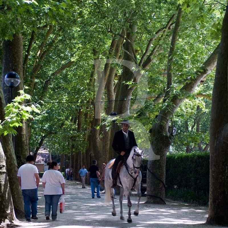 II Feira Equestre Oeste Lusitano