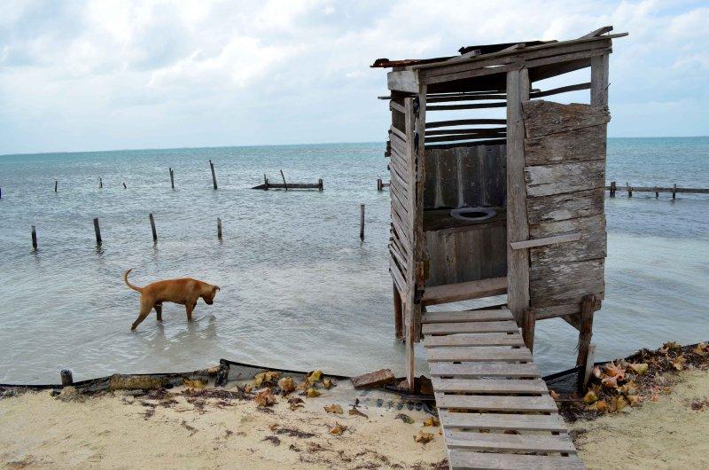 Oceanfront Real Estate