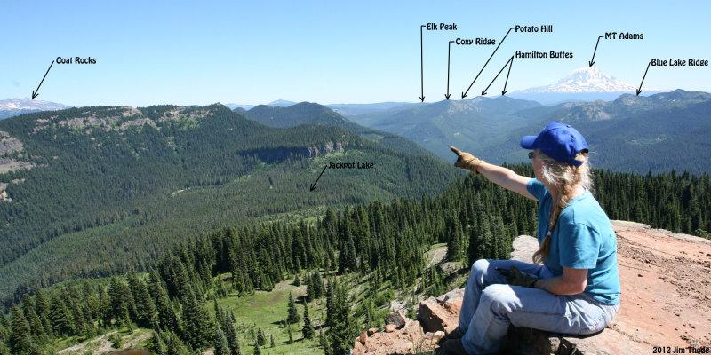 Looking east fromCispus Peak