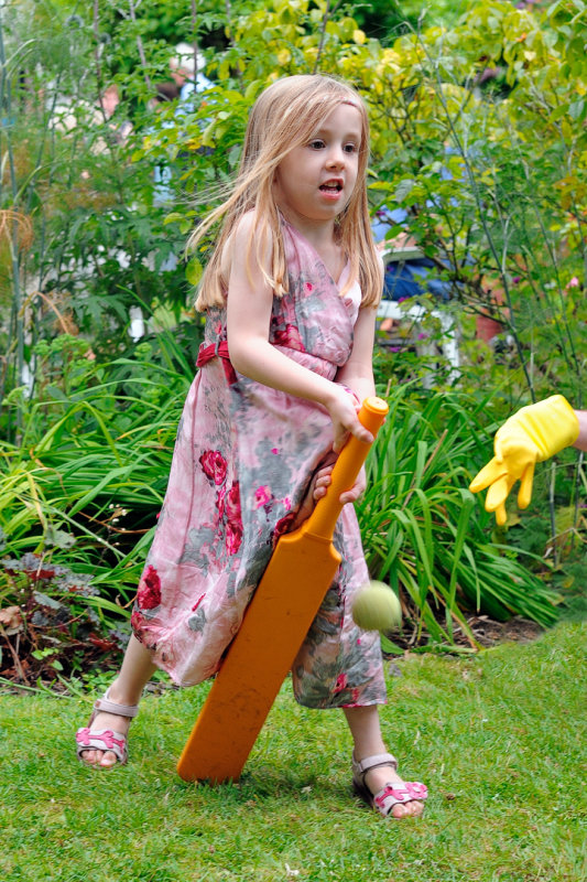 Orla - Cricketer (French) and the mysterious marigold.