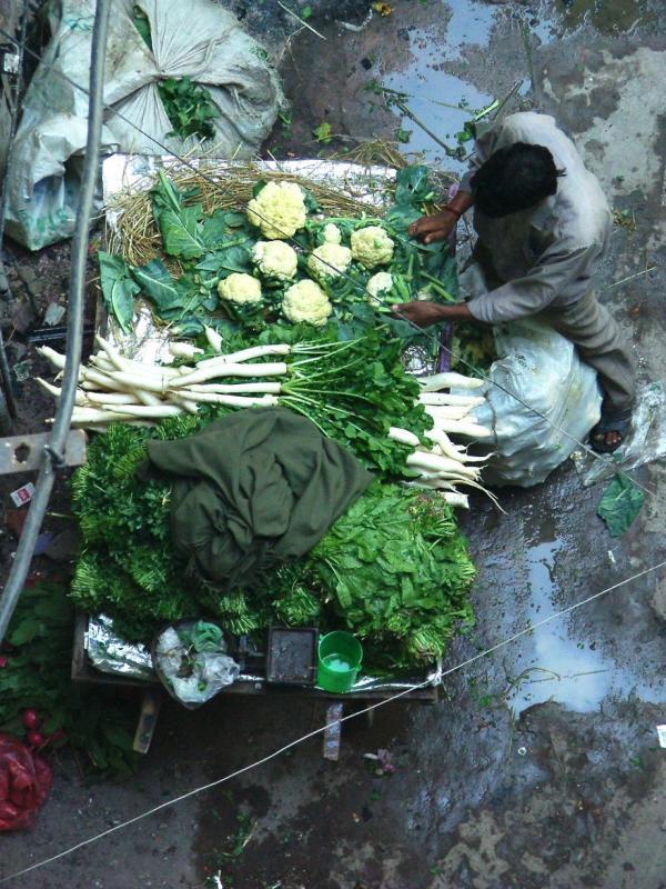 Cabbage and Cauli