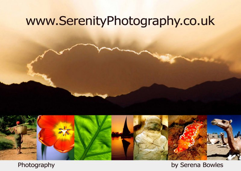 Serenity Photography