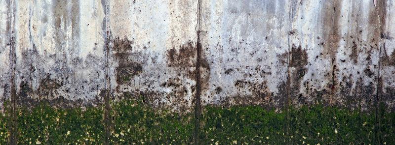 Concrete River Wall