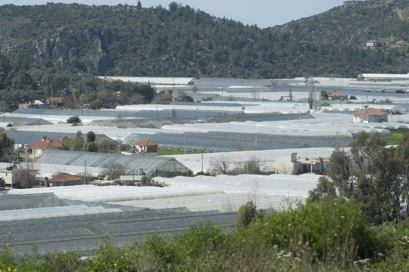 Xanthos March 2011 5166.jpg