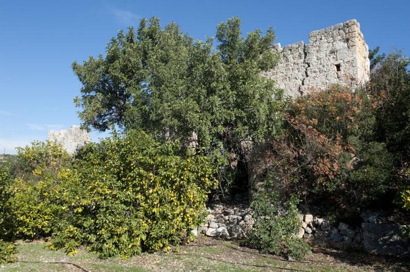 Kizkalesi and Ayas December 2011 1204.jpg