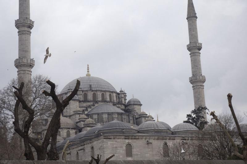 Istanbul ramble 1917.jpg