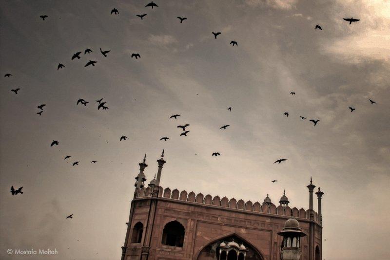 Jama Masjid - Delhi, India