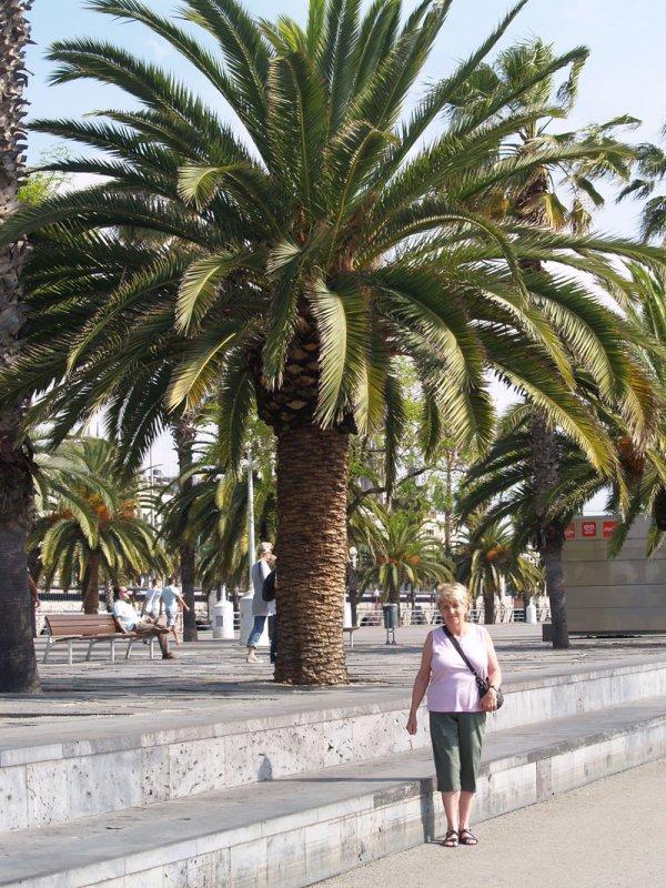 Mom under Palms