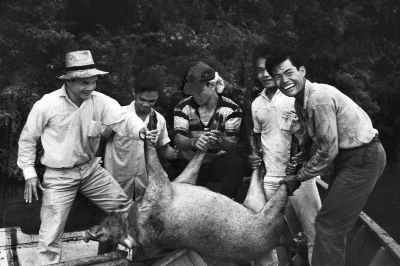 1964 Sarawak - Hunters and their quarry