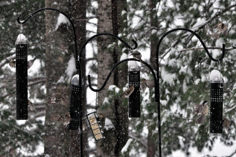 Ce nest pas parce quil neige...
