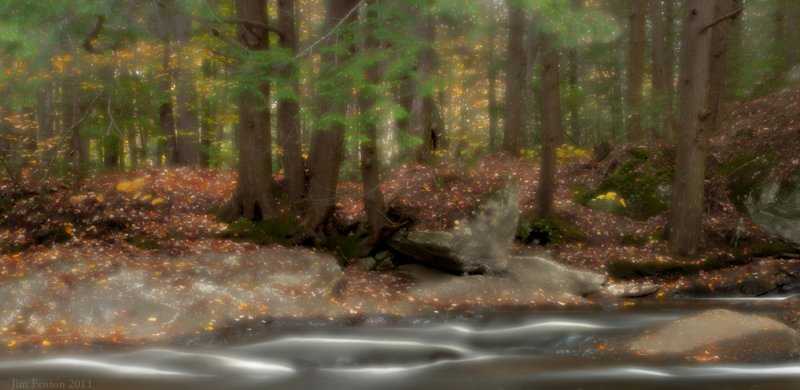 _NW06367 Woodland Stream in New Hampshire.jpg