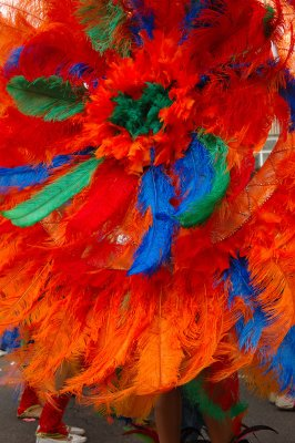 Feather duster 2