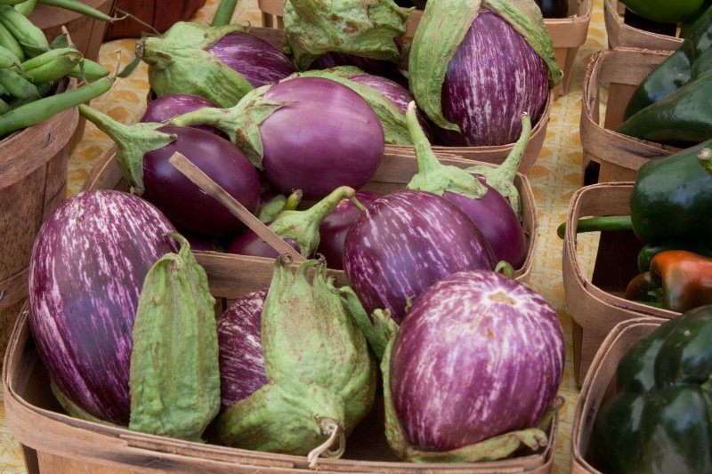 These eggplants are great for caponata!