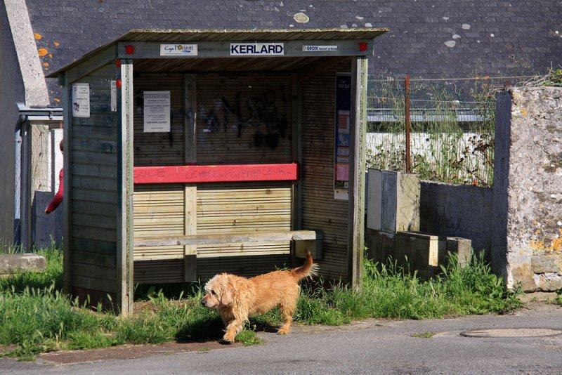 Kerlard bus stop