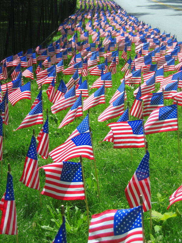 Flags at the cemetery<br>6201
