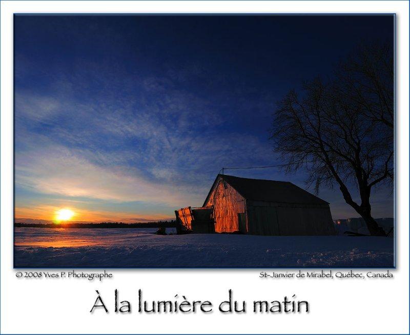Morning Light (Jan 2008) ...
