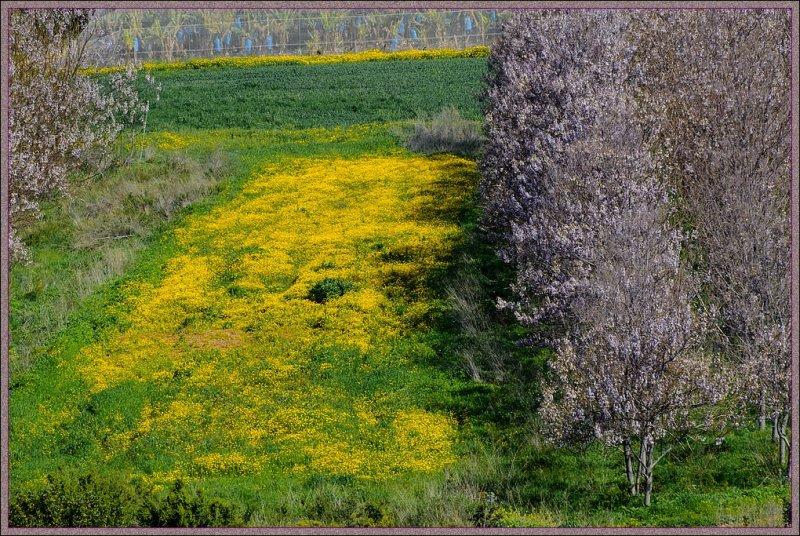 Beginning of spring 2012