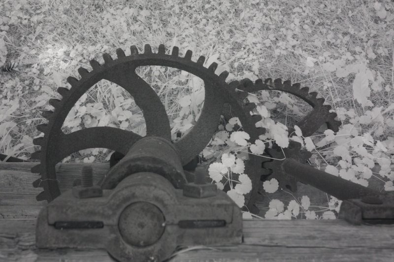 Cogs and wheels