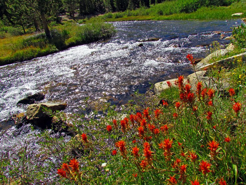 Paintbrush and Rock Creek.jpg