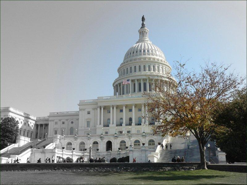 The Capitol Washington