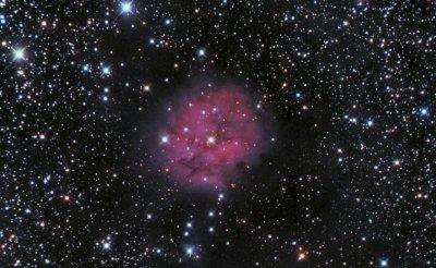 Cocoon Nebula, new procesing