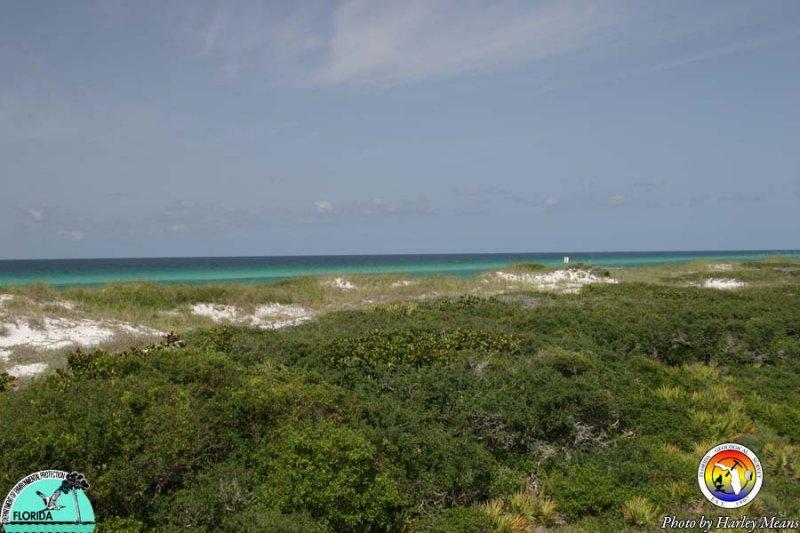 CoastalWaltonCo3.jpg