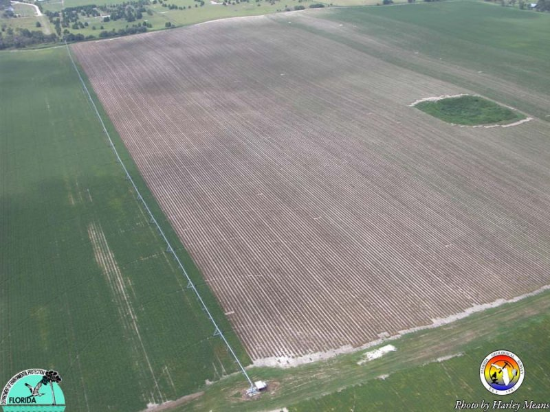 KarstAgriculture.jpg