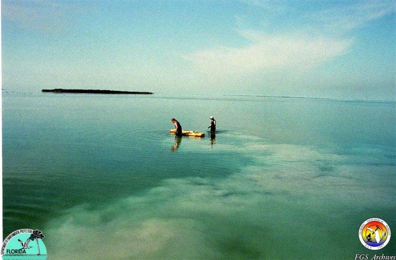 Keys Florida Bay sampling.jpg