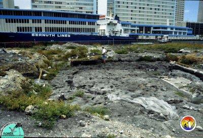 Miami Circle site view.jpg