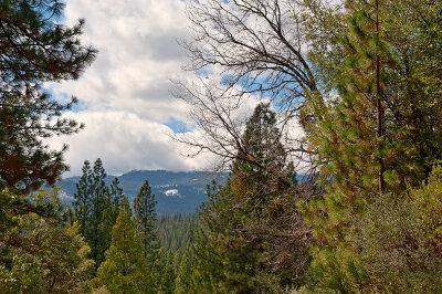 Chilnualna Falls Trail View