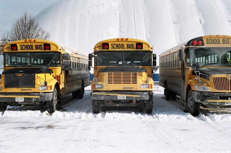 Three buses