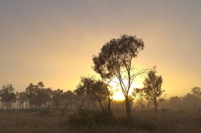 Foggy sunrise<p>SAM_255-257