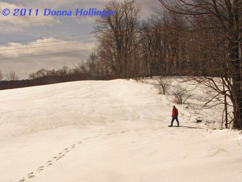 Good Snowshoeing Monday