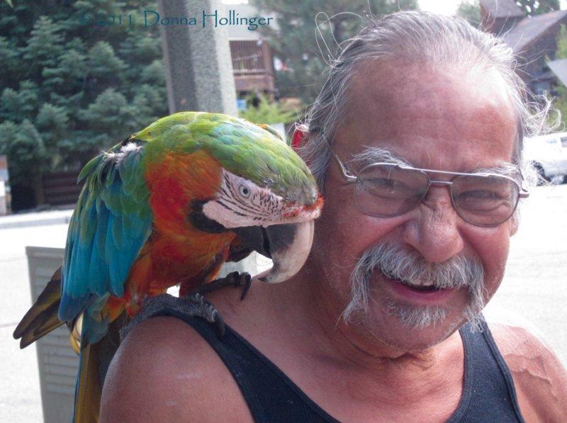 Macaw and Friend in Julian