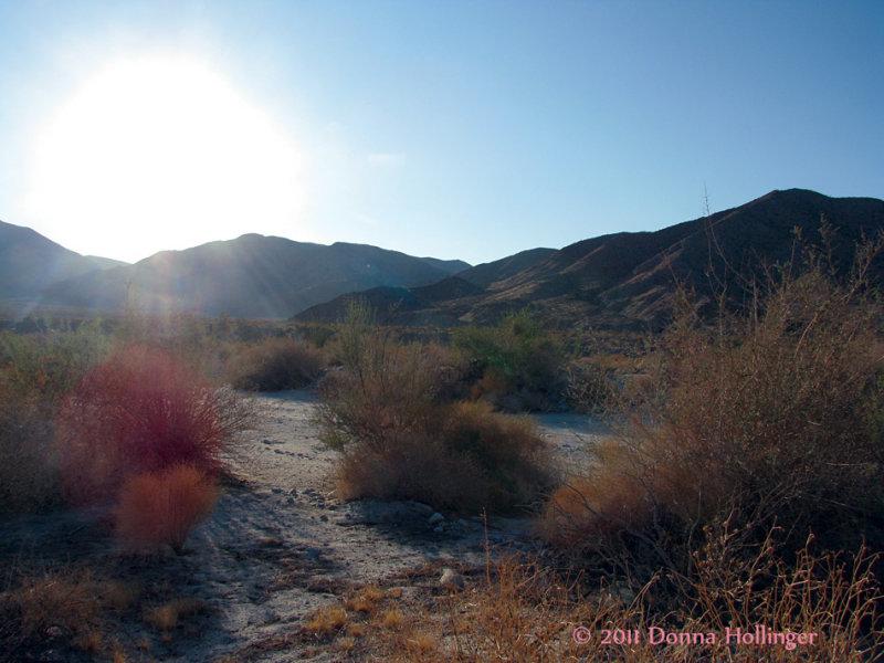 Palm Springs Desert Sun-Up