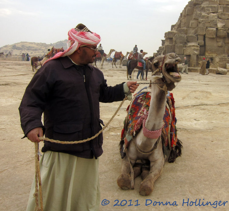 Mr.M and His Camel