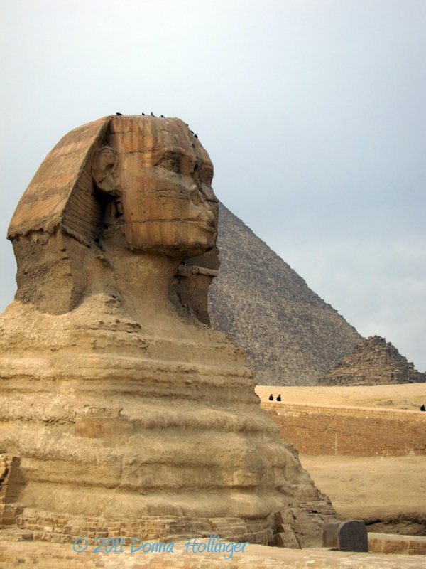 Magnificent Head of the sphinx