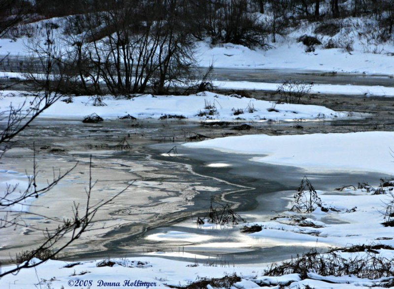 Icy Edges of the River