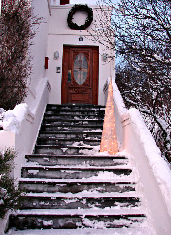Christmas Tree on the Doorstep