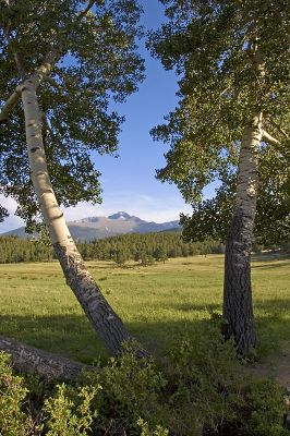 Fern Lake Trailhead