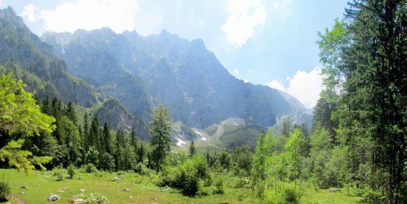 panorama: in the Logarska Dolina