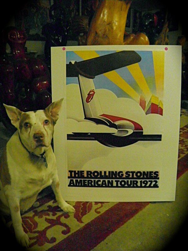 Poster: The Rolling Stones American Tour 1972 (dog not included!)