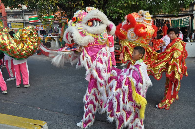 Small Chinese Dragons