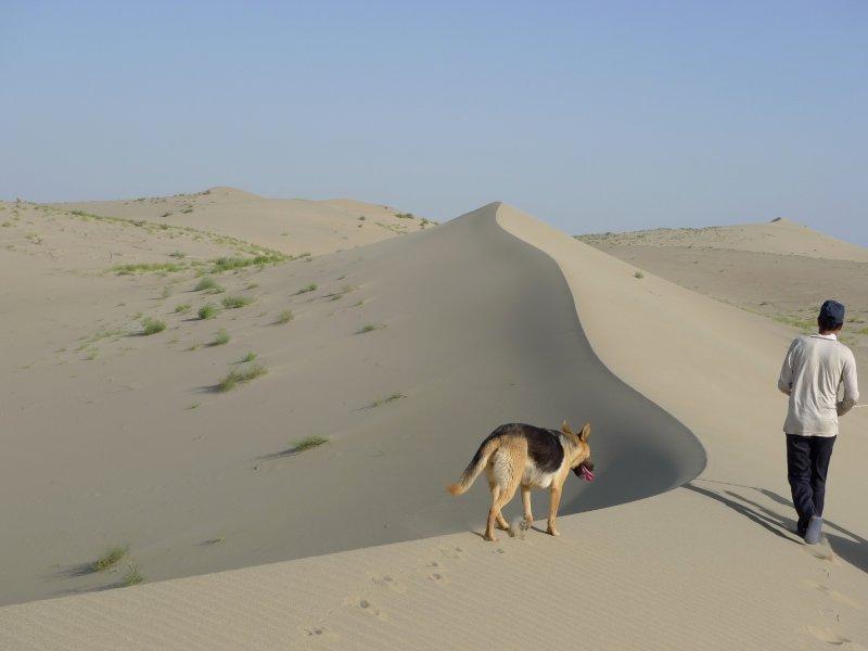 Taklaman Desert1.jpg